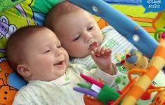 Twin Developmental Milestones: Movement and Physical Activity